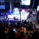 """Auspiciamos el Torneo de Kickboxing """"Desafío de Guerreros Chile vs USA – Coronel 2017"""""""